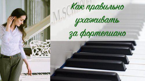 maxresdefault (4).jpg
